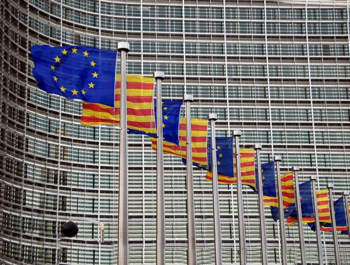 1 de gener 2016: Les oficines de la UE a Brussel·les donen la benvinguda al nou estat membre amb el banderam tradicional.