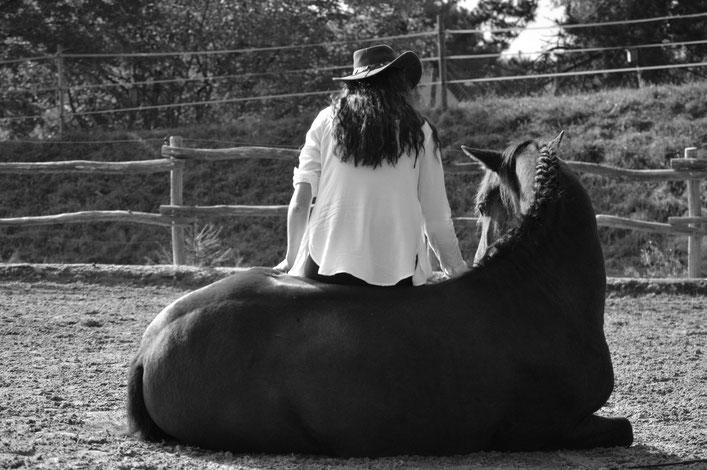 Tanja Groneberg Equestre Anspruchsvolles Freizeitreiten Schweiz Reiten Barock