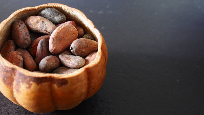 fèves cacao cru