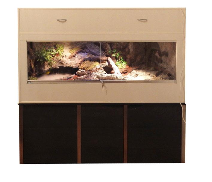 Terrarium für Pracht-Erdschildkröten