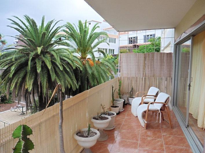 Balkon mit Blick in den Garten und 2 großen Palmen.