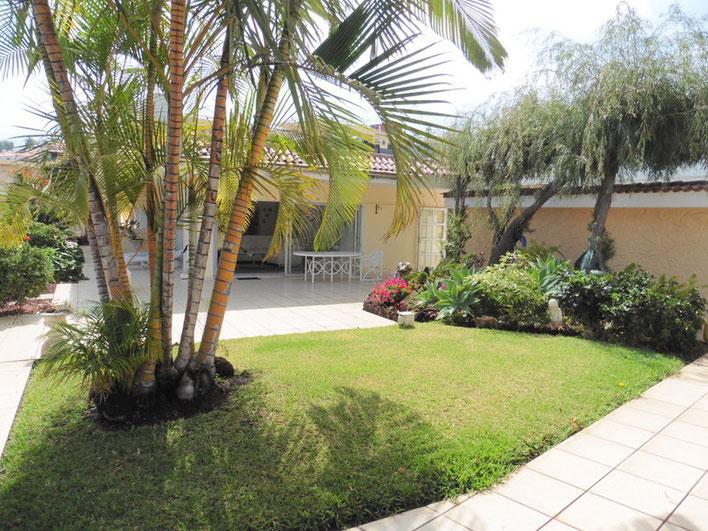 Blick durch Palmen  bis zum Chalet im Hintergrund vom Bild.