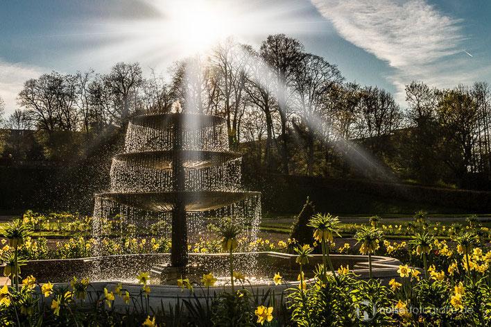 Orangerie Gotha Sonne