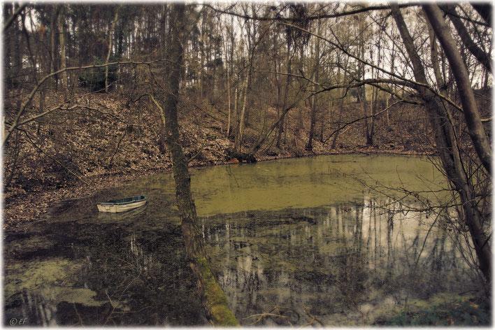 Der verlassene Teich