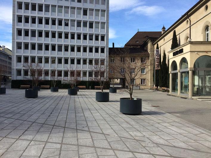 Ein paar gespendete Bäume in Kübeln auf einem versiegelten öffentlichen Platz. (Foto UGN)