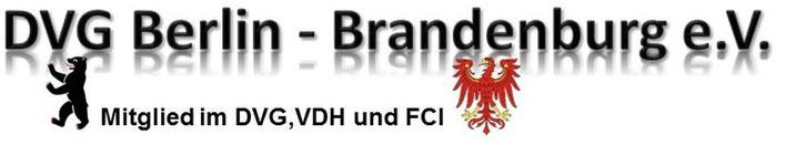 DVG, DVG Berlin Brandenburg, Hundesport, FCI, Berliner Bär, Brandenburger Adler, Leistungssport , Sporthunde, Hundetraining