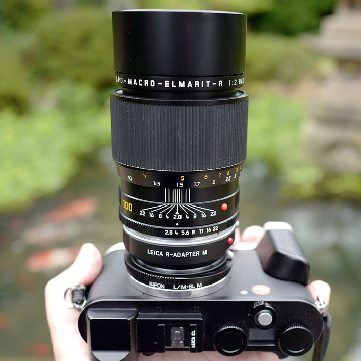 LeicaCL+Leica R Macro Lens  Apo-Macro-Elmarit-R 100mm f2.8