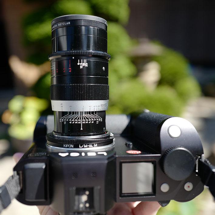 Leica SL ライカ タンバールM F2.2/90mmLeica Thambar M F2.2/90mm アサガオ