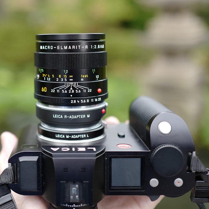 LeicaSL+Leica Macro Lens Macro-Elmarit-R ROM 60mm f2.8