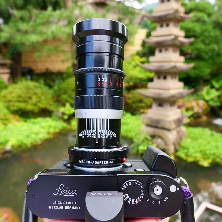 Leica M-P type240 ライカ タンバールM F2.2/90mm Leica Thambar M F2.2/90mm 皐月
