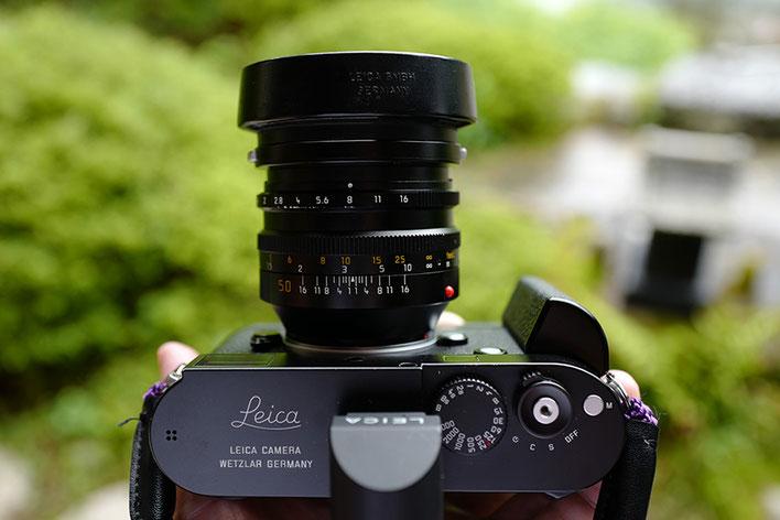 Leica M-P type 240 Noctilux 50mm F1 Macroadapter