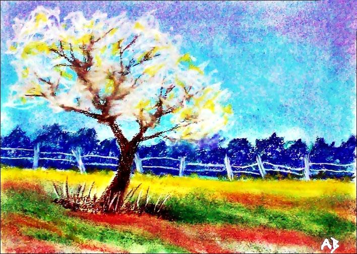 Frühlingslandschaft, Pastellgemälde, Frühling, Wiese, Weide, Wald, Bäume, Baum, Blüten, ZaunLandschaftsbild, Pastellmalerei, Pastellbild
