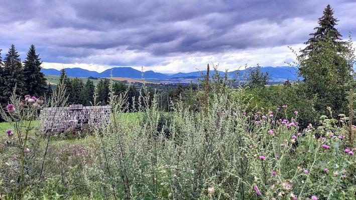 Blick auf die Berge der niederen Tatra