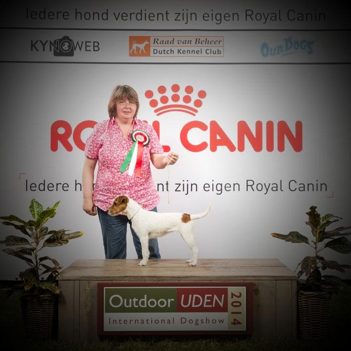 CACIB Uden - Niederlande 22.06.2014