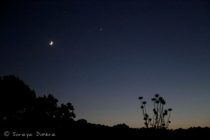 El maravilloso triángulo de la Luna, Júpiter y Venus en una noche de junio.