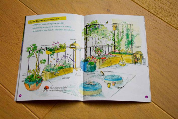 livret pédagogique, illustration, nature sur balcon, nature en ville, biodiversité en ville, nature urbaine, végétalisation, pédagogie,
