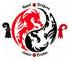Basel Dragons Junior Cricket Club logo