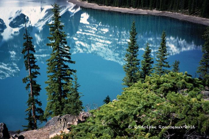 Au Canada, un lac et des pins très hauts, très vert et le reflet d'une montagne dans l'eau