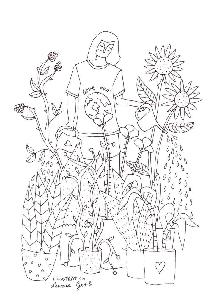 62_Pflanzen