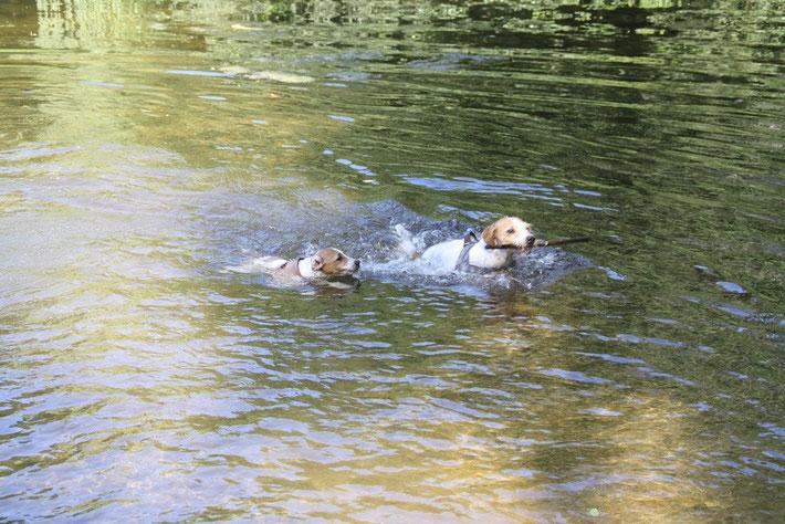 schwimmen mit Mama