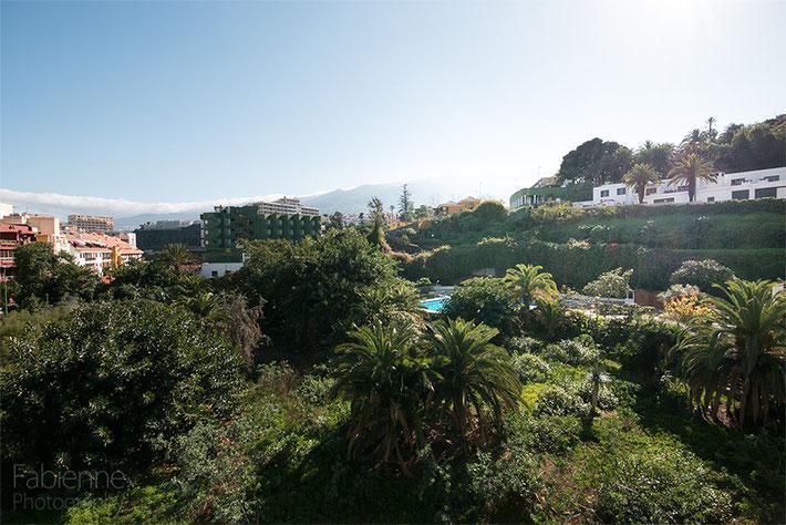 Ein Traumblick auf die grüne Anlage, den Pool des Hauses und im Hintergrund die Berge.