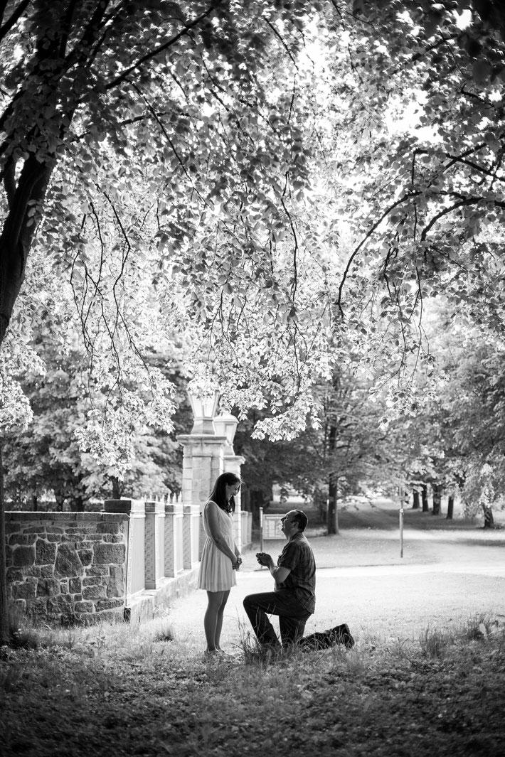 Heiratsantrag am Schloss