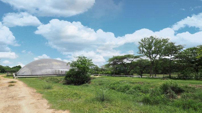 Biodigestor en matadero - rastro - frigorifico de reses - Biodigestor en matadero de reses - cerdos - covered lagoon digester for slaughterhouse waste