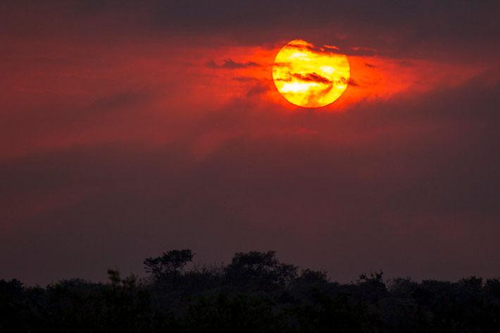 Die Ruhe und Schönheit der afrikanischen Wildnis!