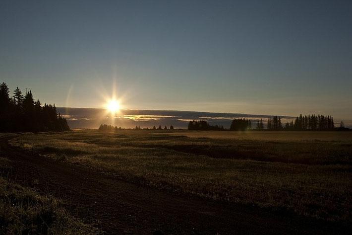 Der zweite Tag bei den Bären begrüßte uns am frühen Morgen im Lake Clark NP mit strahlendem Sonnenschein.