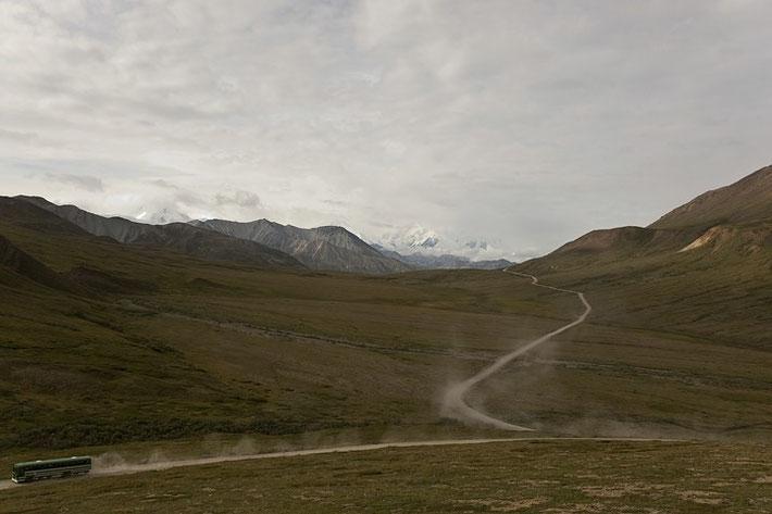 Blick von der Parkstraße auf den Denali.