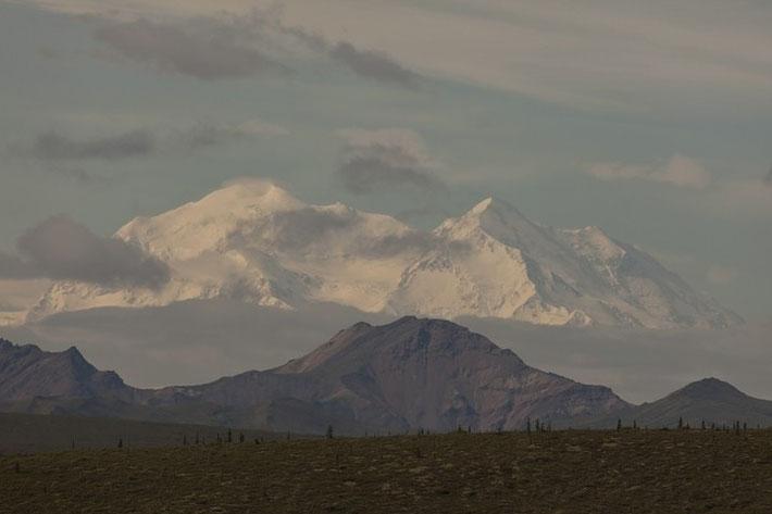 Wir hatten wirkliches Glück und konnten jeden Tag zu jeder Tageszeit (wie hier am Abend) den Mount McKinley sehen. Ein sehr seltenes Naturschauspiel, da der Berg meist völlig von Wolken verdeckt wird.