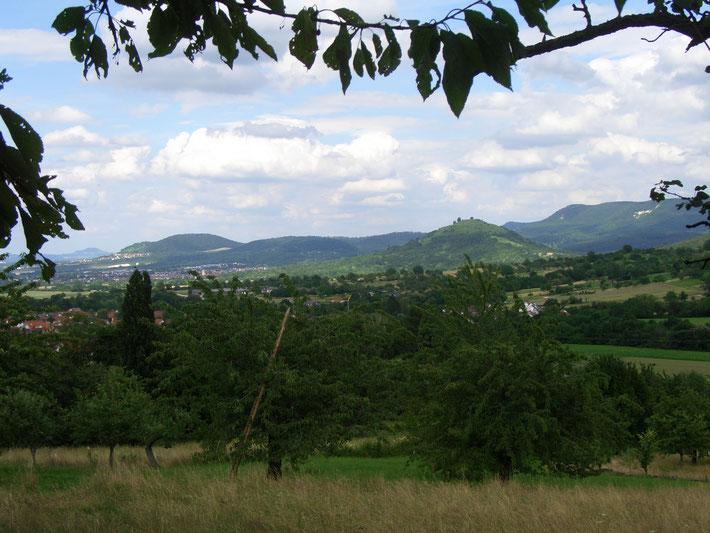Verträumte Heimat - eingebettet zwischen malerischen Hügeln, Burg, Ruinen und prächtigen Obstbäumen, meine Schwäbische Heimat - mein Bissingen.
