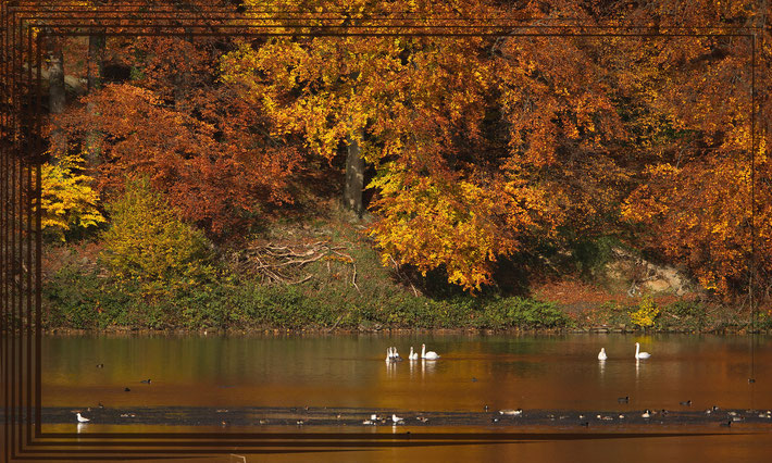Herbststimmung am Hengsteysee