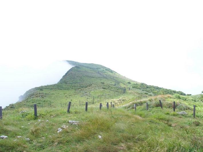 今日は雨こそ降らなかったがず~っとガスの中でした。下山後の車中で振り返ると天気回復、山頂が見えました。