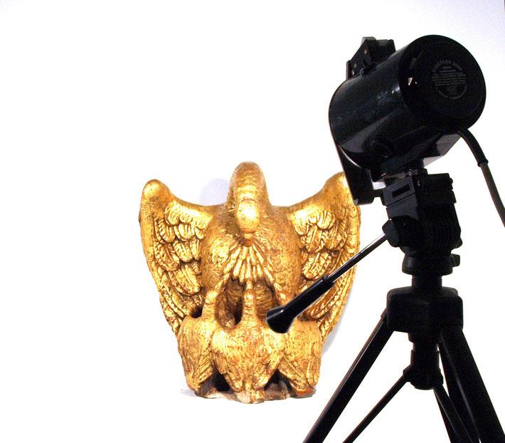 Der Goldene Pelikan reißt seine Brust auf, um seine toten Jungen zum Leben zu erwecken.  Hauszeichen aus der Schausammlung des Bezirksmuseums Alsergrund (ALSEUM)