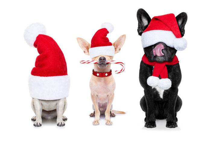 FUNI SMART ART grooved sich und Dich auf Weihnachten ein.