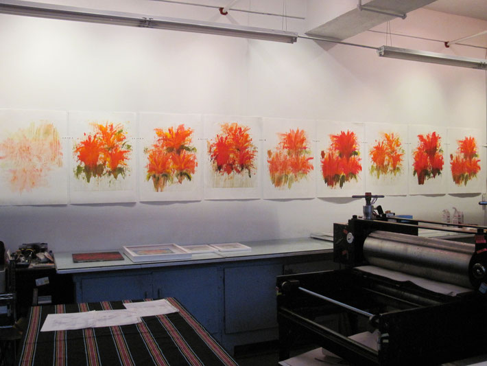 indian Shots, 2010, monoprints series