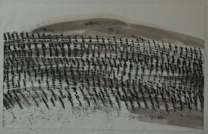 winter  vineyard   2013    monotype  print  /   brou  de  noix   chinese  ink  on  rice  paper     50  x  32  cm