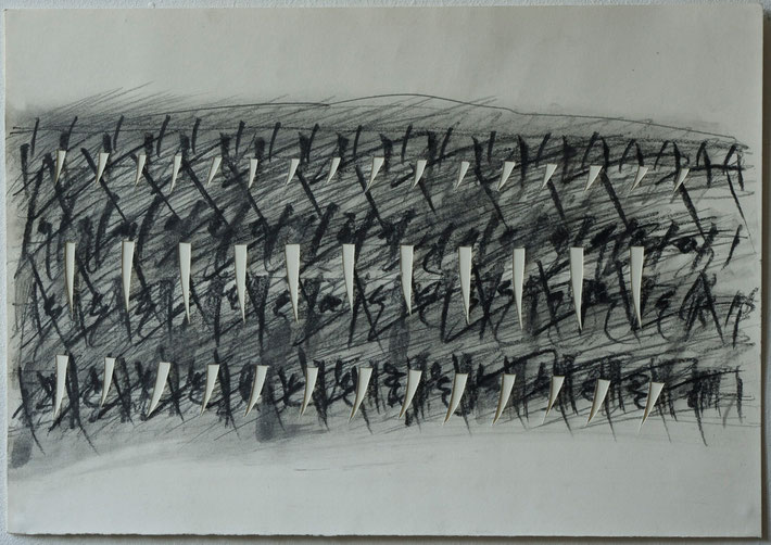 vineyard /  notation  2011     coal on paper cut outs     35 x 50 cm