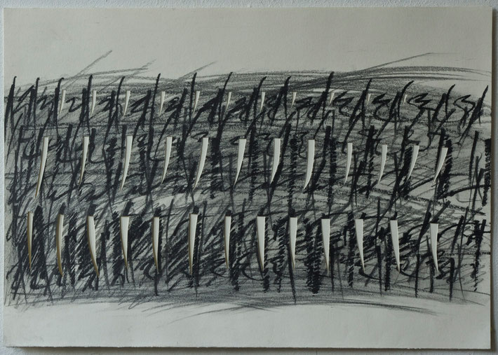 vineyard  2011      drawing  coal  crayon and cut out paper      35 x 50 cm