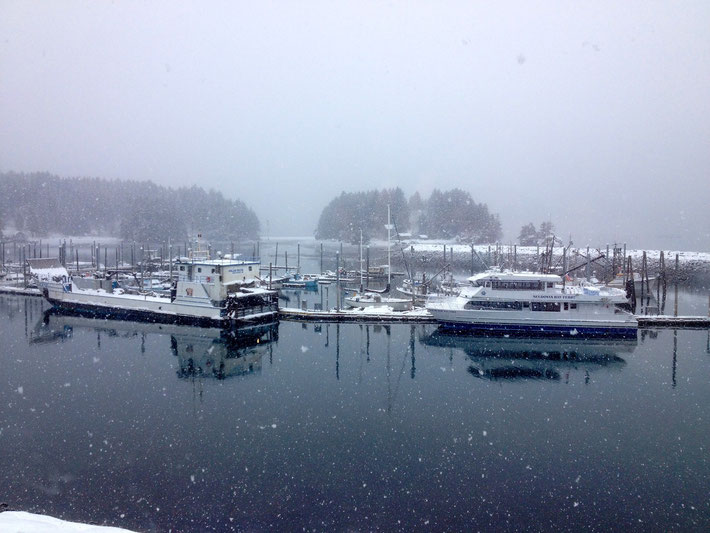 Just because everyone else shows the sunny side of Seldovia, here is a shot of our beautiful winter!