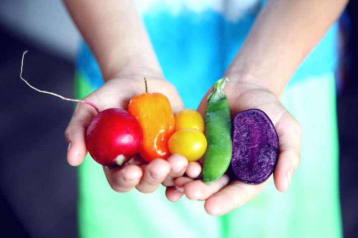 Going meat free isn't as hard as it looks. Eating fruits and vegetables is fun! Explore vegetarian diet myths & facts as part of your nutrition education to consider a vegetarian lifestyle! #dieteducation #vegetarianlifestyle #dietmyths #vegandiet