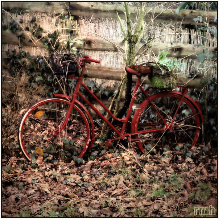 painted old bike
