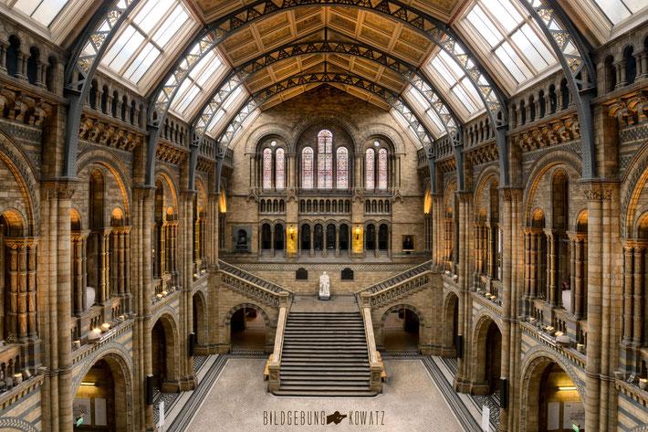 London, Natural History Museum