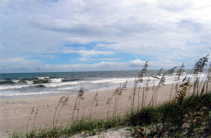 Photo by Sher DiMaggio Zois - View of the beach from the Center's dunes