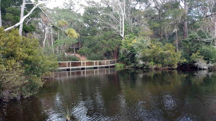 Jan. 2021 : Bridge over the lagoon. Photo taken by Anthony Zois