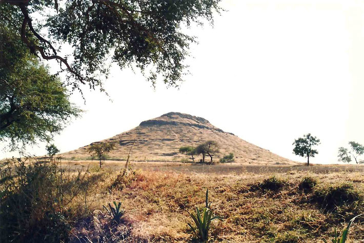 1988 Seclusion Hill - Photo ; Anthony Zois