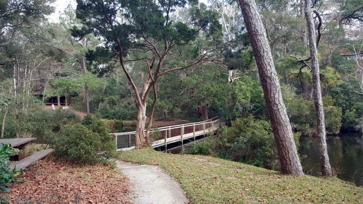 Jan. 2021 : Path to the bridge. Photo Taken by Anthony Zois.