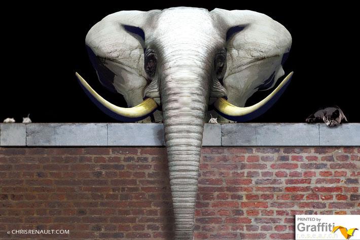 La Cantina - Poster Elephant © Chris Renault 2011-2014