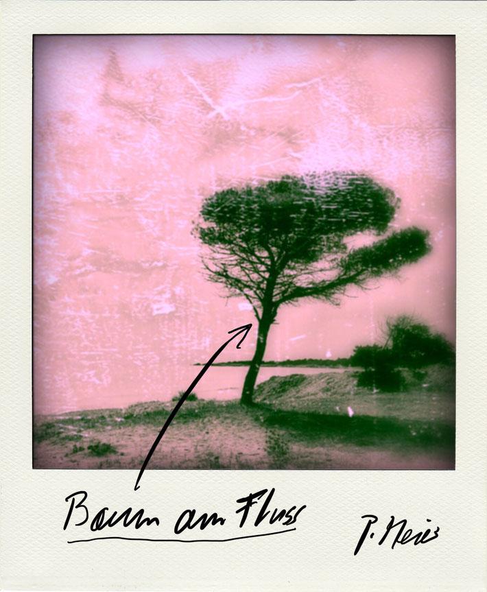 Pedro Meier Schriftsteller – Berlin Brandenburg – Polaroid 2005 zu Gedichtzyklus BERLIN – Amrain Verlag © Pedro Meier Artist, Fotokünstler, Lyriker, Maler, Autor. Atelier: Niederbipp. Bangkok BACC, SIKART Zürich ProLitteris. Literatur, www.Autorenwelt.de